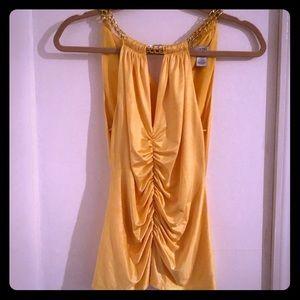 Cache Dress top